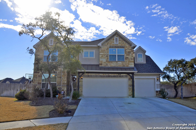 Boerne Single Family Home For Sale: 220 Woods Of Boerne Blvd