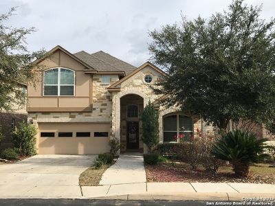 Bexar County Single Family Home For Sale: 5638 Cypress Dawn
