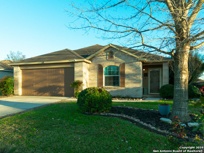 Cibolo Single Family Home Active Option: 113 Spring Willow