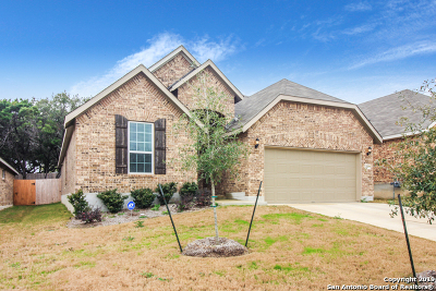 Helotes Single Family Home For Sale: 10628 Hibiscus Cove
