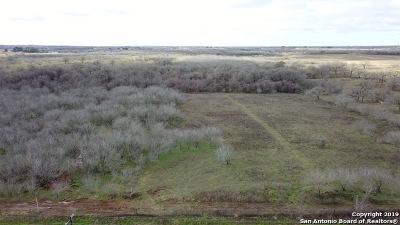 Seguin Residential Lots & Land For Sale: 6860 Elm Creek Rd