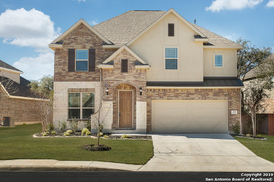 Bexar County Single Family Home For Sale: 335 Clorinda