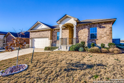 Cibolo Single Family Home For Sale: 133 Blaze Moon