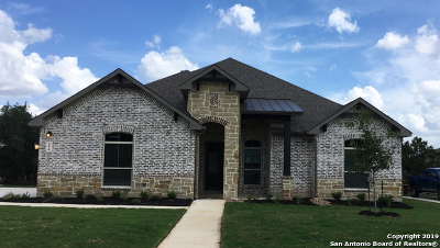 New Braunfels Single Family Home New: 336 Allemania Dr