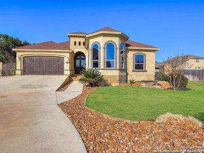 New Braunfels Single Family Home For Sale: 838 Lodge Creek Dr