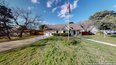 Castle Hills Single Family Home For Sale: 380 Towne-Vue Dr