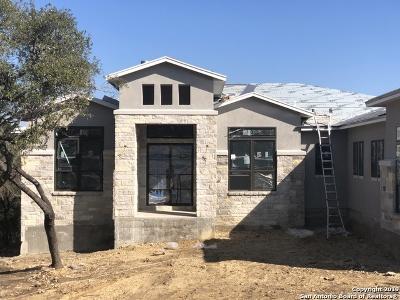 San Antonio Single Family Home For Sale: 20610 Osprey Way