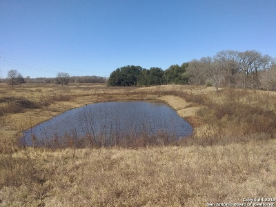 Guadalupe County Farm & Ranch For Sale: 4888 Fm 467