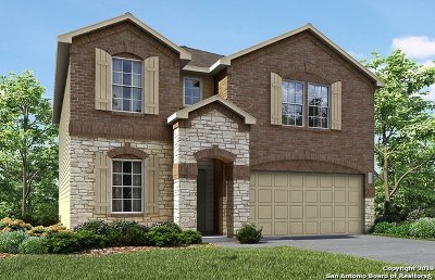 Bexar County Single Family Home Price Change: 12005 Silver Valley