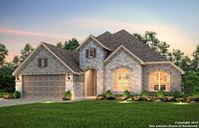 Single Family Home New: 2911 Bright Skies