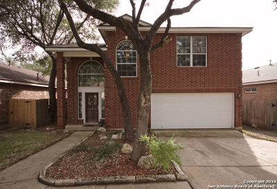 Helotes Single Family Home New: 8618 Eagle Peak