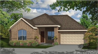 New Braunfels Single Family Home New: 1137 Nutmeg Trail