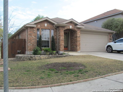 New Braunfels Single Family Home For Sale: 505 Pecos Cir