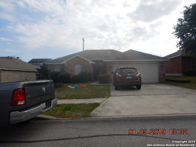 Cibolo Single Family Home Active Option: 217 Weeping Willow