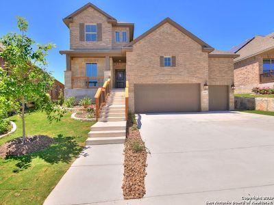 Single Family Home New: 28907 Diana Falls