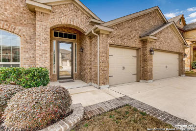 Cibolo Single Family Home For Sale: 304 Scenic Vista