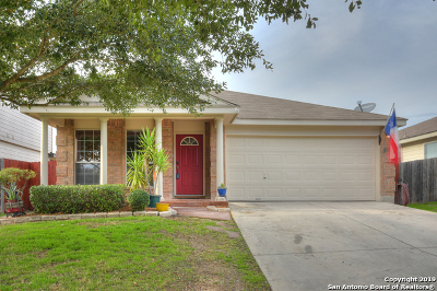 New Braunfels Single Family Home New: 268 Goliad Dr