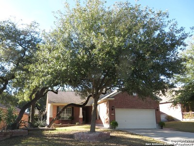 Bexar County Single Family Home New: 4715 Becker Vine