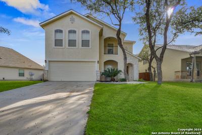 San Antonio Single Family Home For Sale: 21831 Thunder Basin