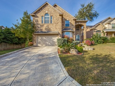 Single Family Home New: 25207 4 Iron Ct