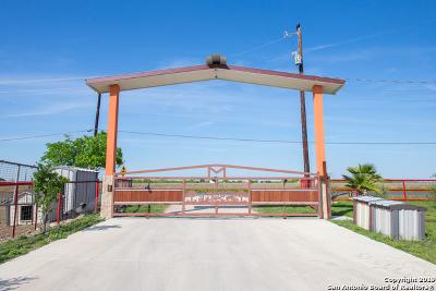 Converse, Live Oak, Selma Farm & Ranch For Sale: 2989 Graytown Rd