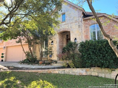 San Antonio Single Family Home New: 214 Gazelle Leap