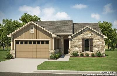 Pleasanton Single Family Home New: 316 Iron Gate
