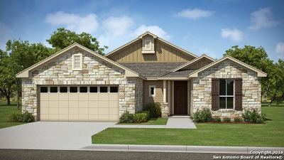 Pleasanton Single Family Home New: 312 Iron Gate