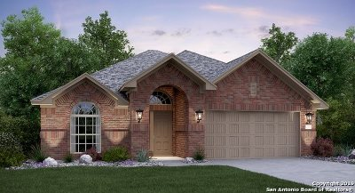 Guadalupe County Single Family Home New: 1876 Danube Dr