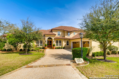 San Antonio Single Family Home New: 10 Kings View