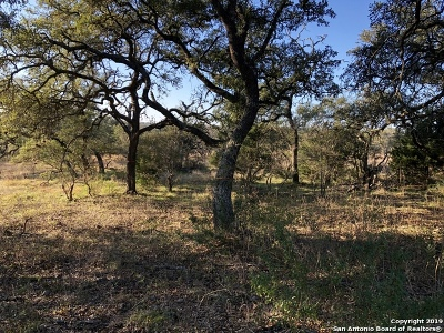 New Braunfels Residential Lots & Land New: 1075 Via Principale