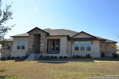 New Braunfels Single Family Home New: 1193 Magnum