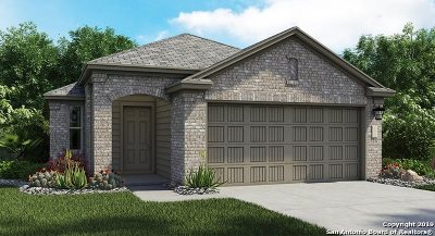 New Braunfels Single Family Home New: 2317 Arctic Warbler