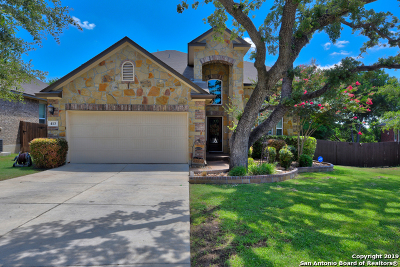 Cibolo TX Single Family Home New: $310,000