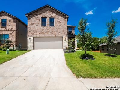San Antonio Single Family Home For Sale: 11135 Pomona Park