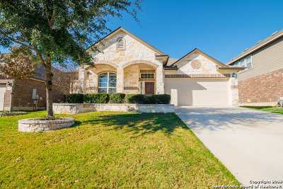 Cibolo Single Family Home New: 244 Flint Rd