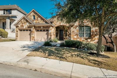 Single Family Home New: 23810 Viento Oaks