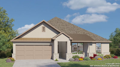New Braunfels TX Single Family Home New: $406,509