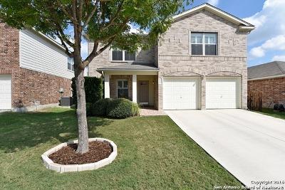 Single Family Home For Sale: 9415 Massaro St