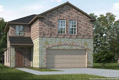 San Antonio TX Single Family Home New: $289,465