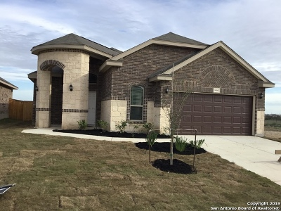 Helotes Single Family Home New: 9906 Bricewood Cove