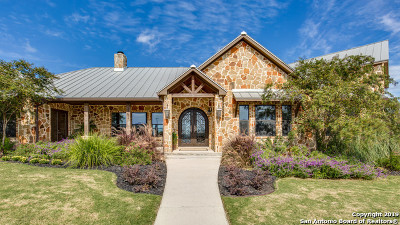 Boerne Single Family Home For Sale: 950 State Highway 46 E