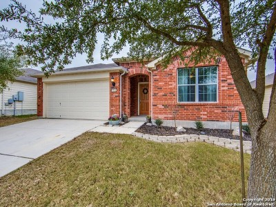 Cibolo TX Single Family Home New: $198,000