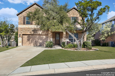 San Antonio Single Family Home New: 28302 Willis Ranch