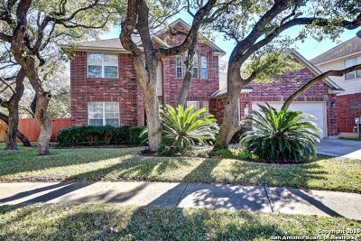 San Antonio Single Family Home New: 1110 Calico Spring