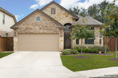 San Antonio Single Family Home New: 8618 Lajitas Bend