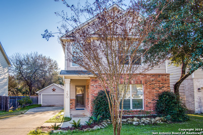 San Antonio Single Family Home New: 450 Cattle Ranch Dr