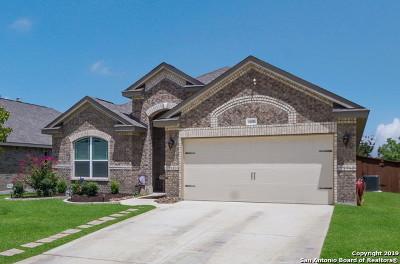 San Antonio Single Family Home New: 11251 Butterfly Bush