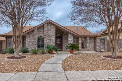San Antonio Single Family Home New: 10843 Royal Bluff