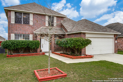 New Braunfels Single Family Home New: 2043 Carlisle Castle Dr